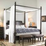 Canopy bed design idea for modern bedroom