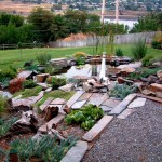 gardening with rocks ideas with colorful rocks