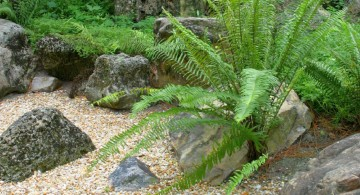 gardening with rocks ideas with old big rock
