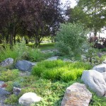 natural looking gardening with rocks ideas