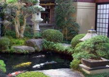 Japanese garden backyard design with Japanese sliding doors
