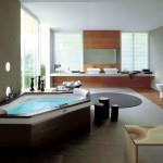 cool modern bathrooms with dark wood tub