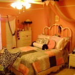 cute girls bedroom ideas with pastel wall and zebra folding chair