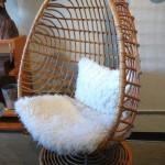 cute half egg modern papasan chair