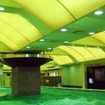 green ceiling indoor swimming pool designs
