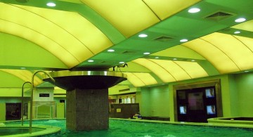 green ceiling indoor swimming pool designs