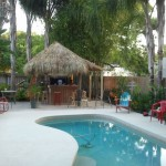 kidney shaped swimming pools with tiki hut