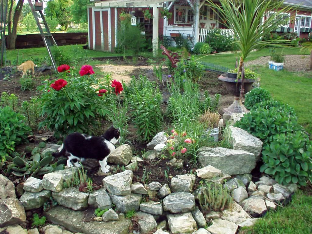 20 landscaping designs with big rocks you must copy for Yard plans landscaping