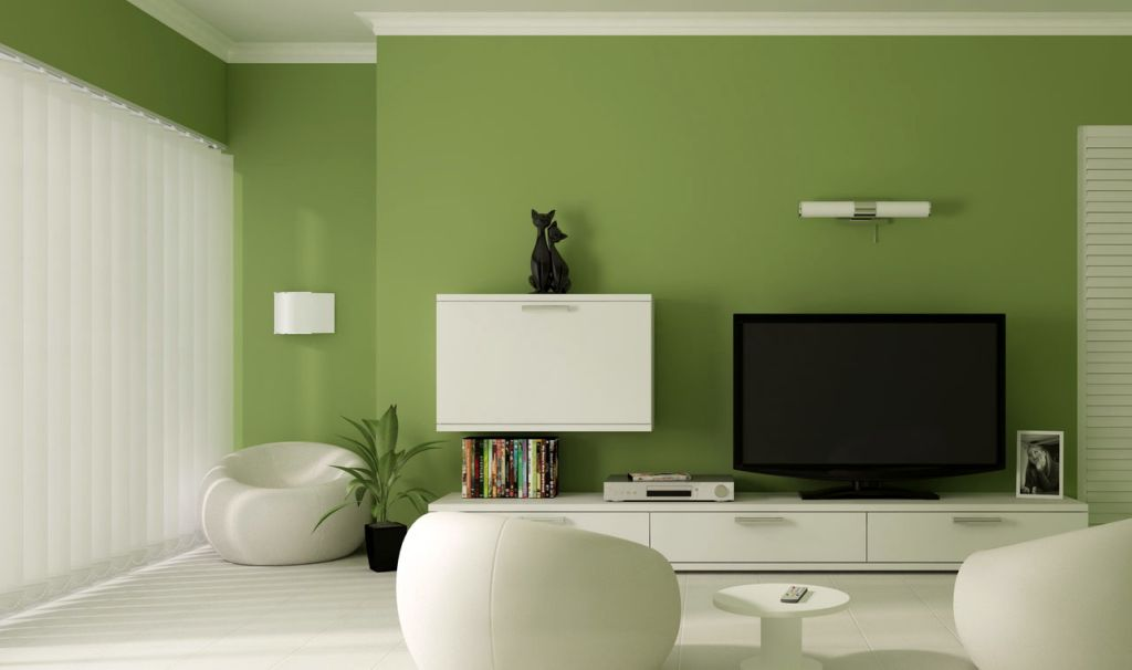 lime green accent walls for contemporer