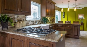 lime green accent walls for the kitchen