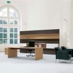 minimalist office furniture in wooden tones