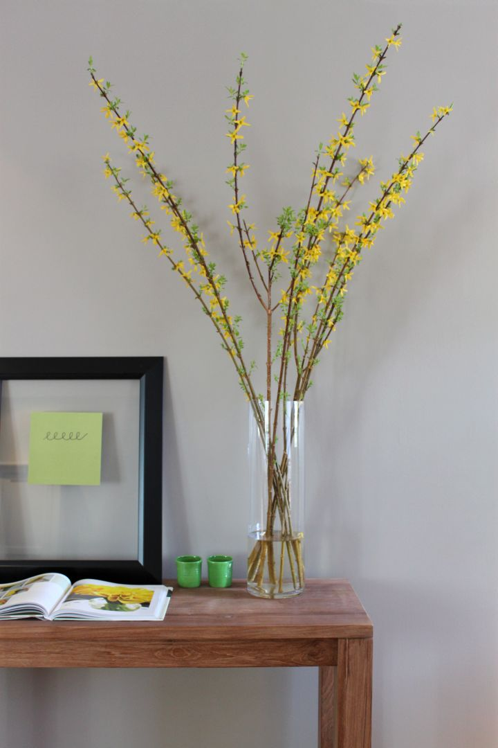 Minimalist Tall Vase With Branches