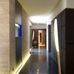 modern hallway decorating ideas in dark wood color for hotel and apartment