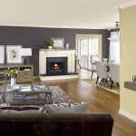 modern painted floors inspiration for room with contemporary fireplace