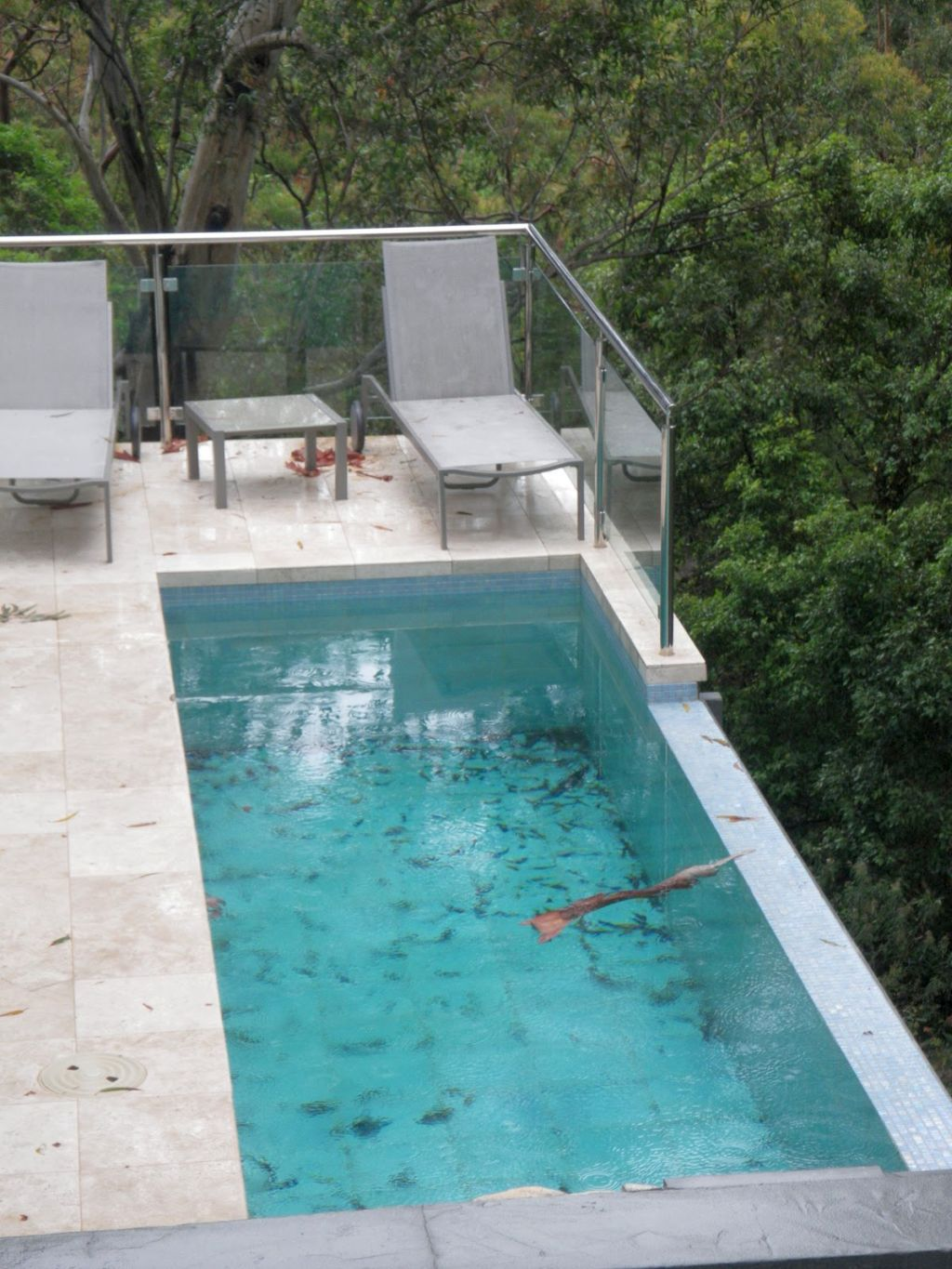 19 breath taking lap pool designs made for modern homes for Pictures of small inground pools