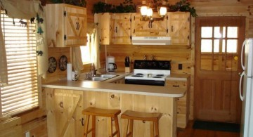 rustic ideas for cabinet doors for small place