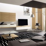 sleek black minimalist modern furniture with bamboo accent