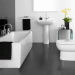sophisticated black bathrooms ideas