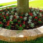 stones for flower beds encircling a tree