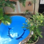 tiny swimming pools with dolphin design