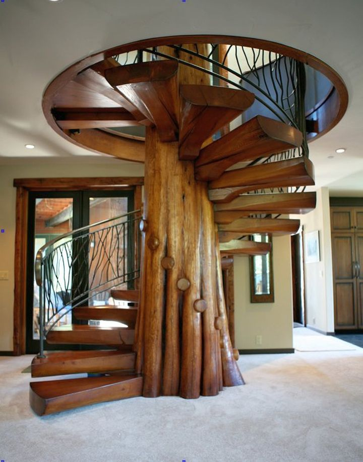 unique spiral wooden staircase designs that seemed to be a whole tree