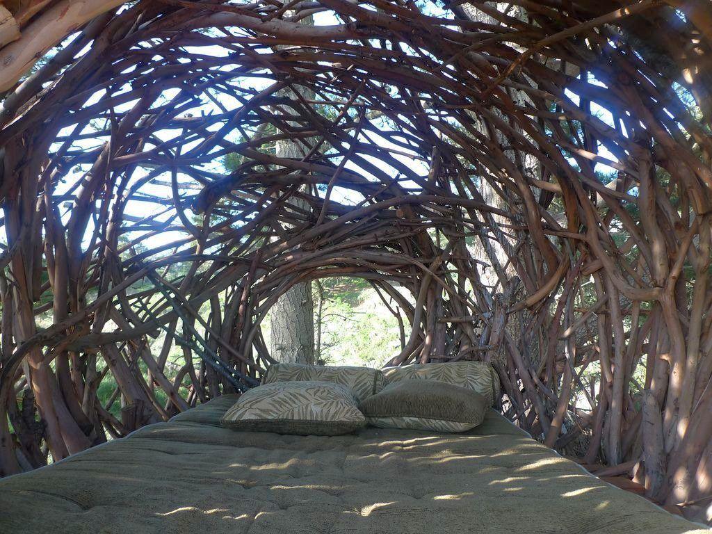 Unique Tree Branch Bed Designs You Won T Believe
