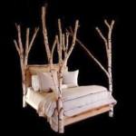 unique tree branch bed using birch tree