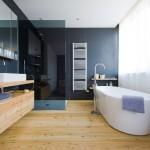 wooden bathroom designs with blue walls