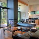 zen living room ideas with contemporary furniture