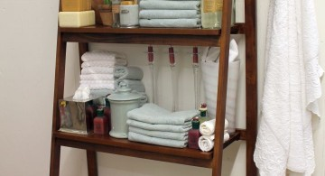 Display ladder for bathrooms