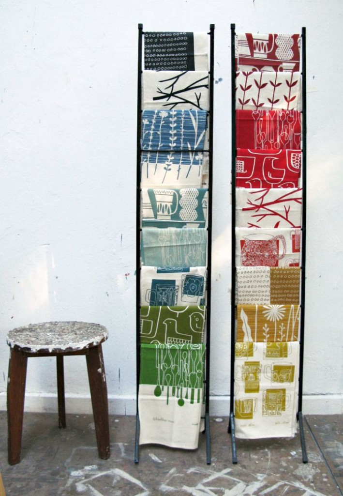 Display ladder for cloth