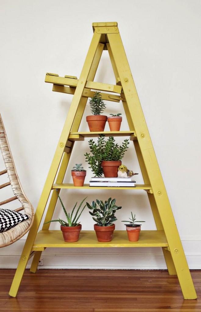 Display ladder for indoor plants