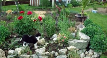 Rustic small rock garden designs