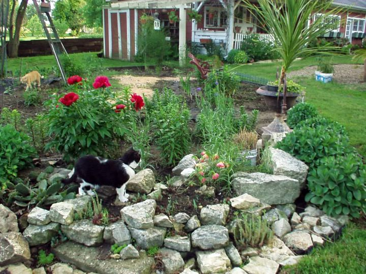 18 simple small rock garden designs for Garden designs small gardens