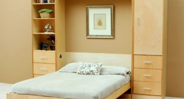 basic murphy bed unit