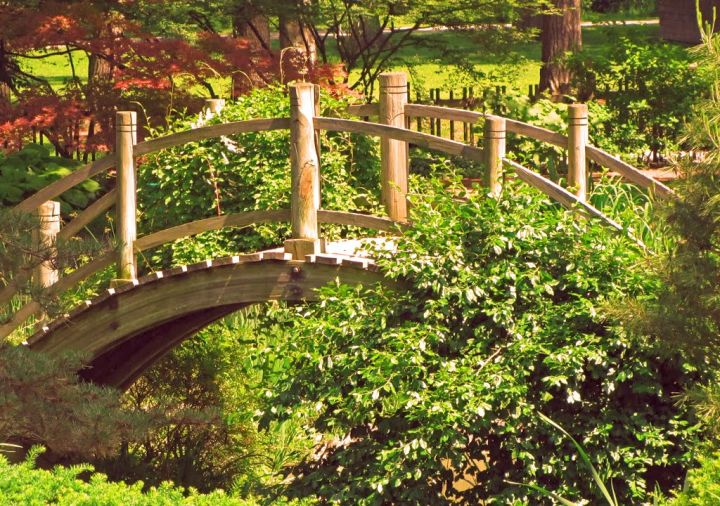 beautiful japanese garden bridge