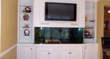 built in TV with small fishtank