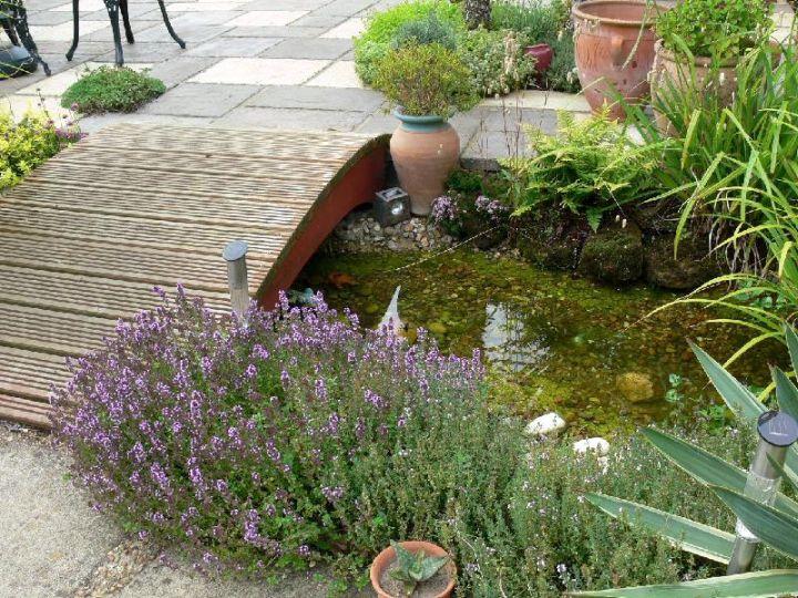 gallery for japanese garden bridge designs