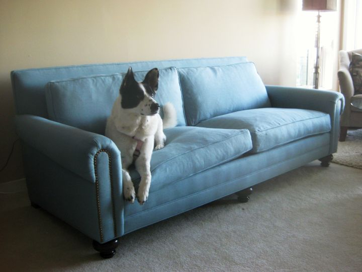 gorgeous blue high end slipcover