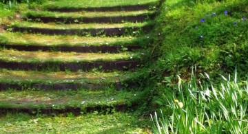 green Garden stairs