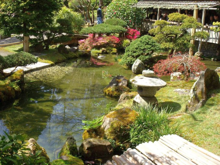 Japanese Garden Designer With Garden Lamp And Koi Pond
