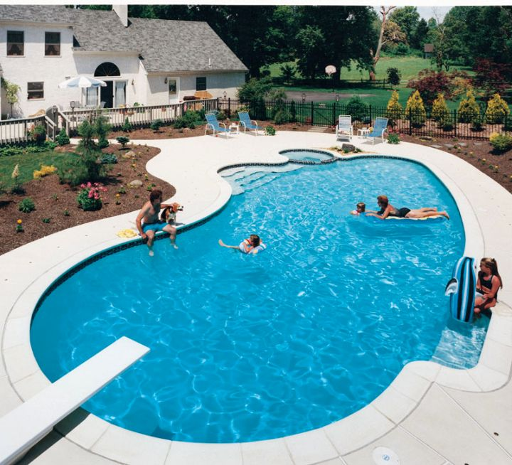 kidney shape pool with jump board