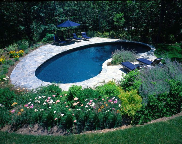 kidney shape pool with stone deck