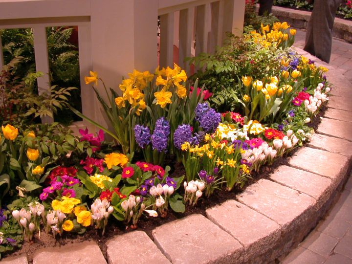 Flower Garden Ideas For Small Areas delighful flower garden ideas for small areas home design and