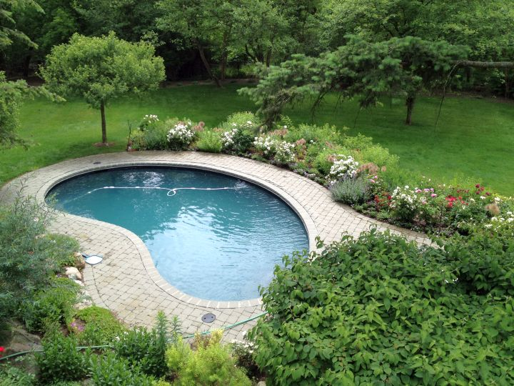 17 Minimalist Kidney Shaped Pool Designs