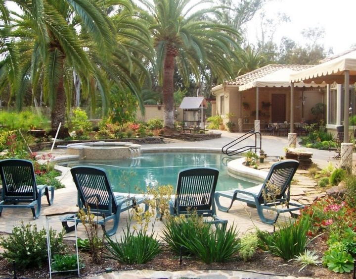 Small Pool Ideas Surround By Garden
