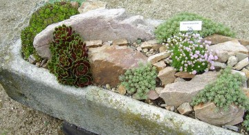 small rock garden designs with oval stone