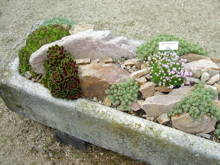 18 simple small rock garden designs
