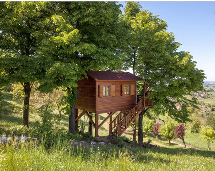 basic idea treehouse on stilts