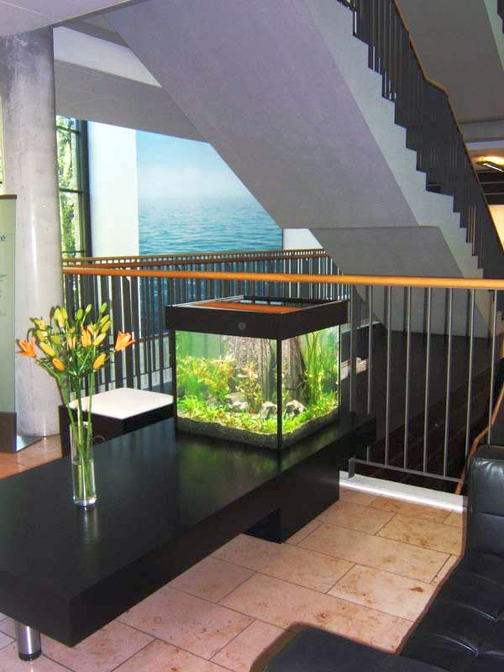 contemporary fish tank attached to the desk